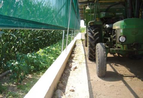 Agricoltura e zootecnia